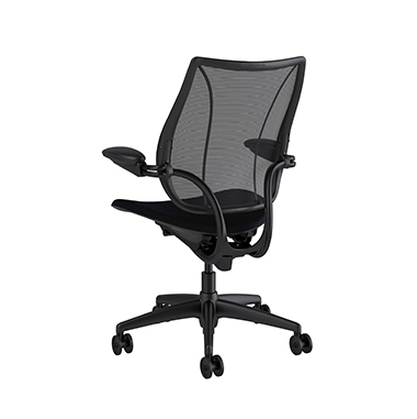 Liberty Task Chair, Monofilament Stripe Black Backrest, Corde 4 Black Seat Picture 3