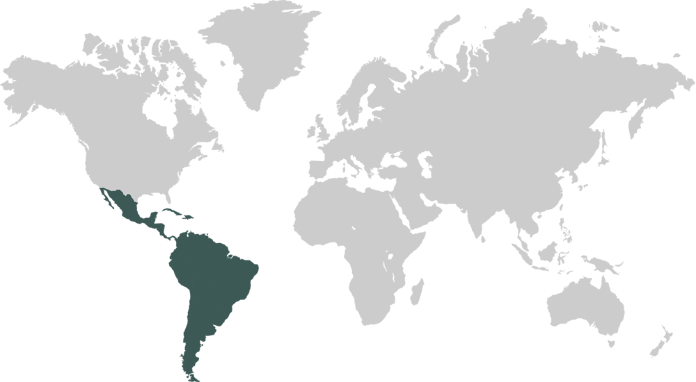 World Map Featuring Latin America